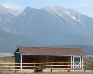 Horse Barn With Mountains in Montana